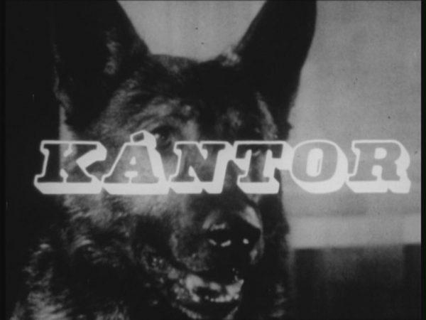 A képen a híres film látható, melyben a nyomozókutya szerepel