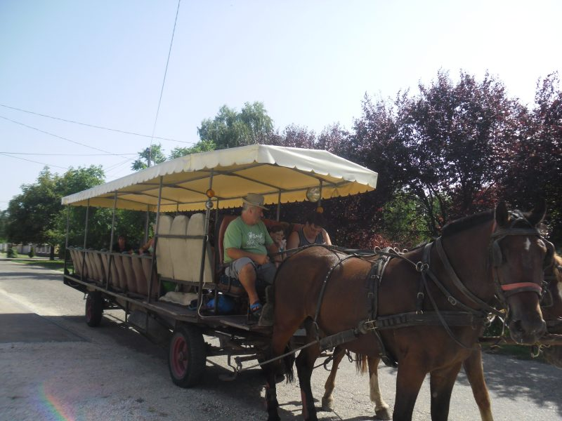 Lovaskocsi lovakkal