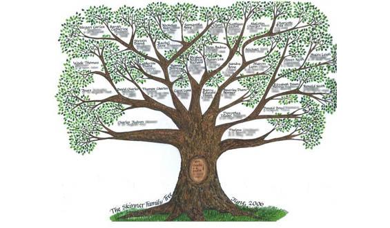 A képen egy szépen rajzolt családfa látható