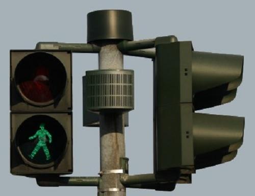 A képen egy zebrához felszerelt beszélő lámpa látható
