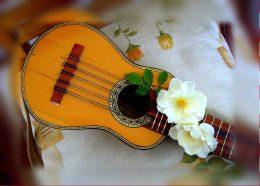 A képen egy charango látható, amely egy andoki húros hangszerfajta. Húrjain két fehér virág látszik.