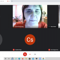 Képernyőfotó az online előadás résztvevőiről