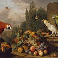 Bogdány Jakab: Gyümölcscsendélet papagájjal és fehér kakaduval